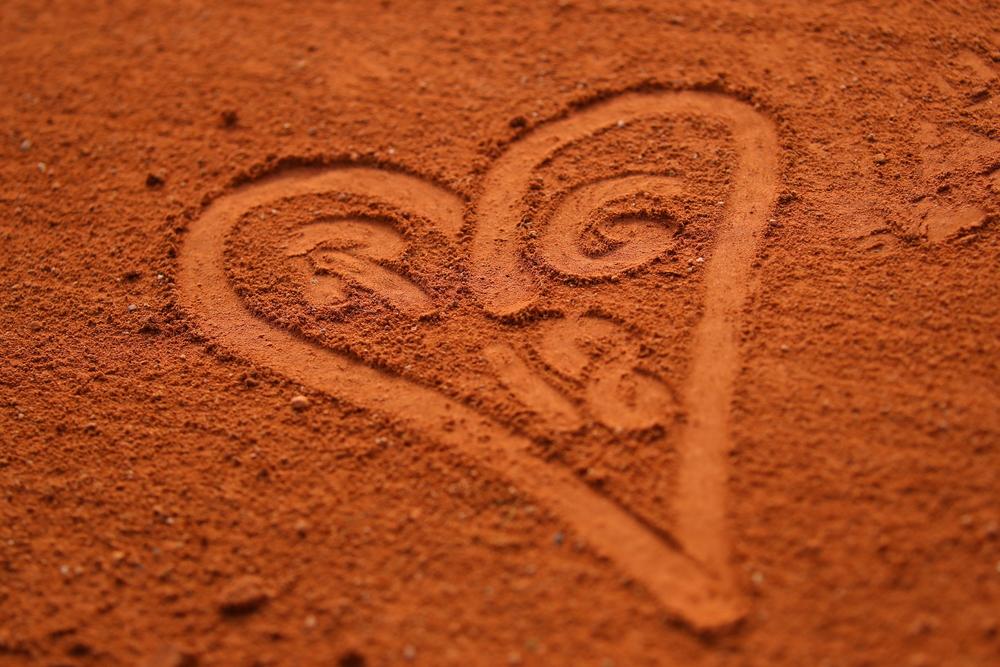 Roland-Garros Terre battue