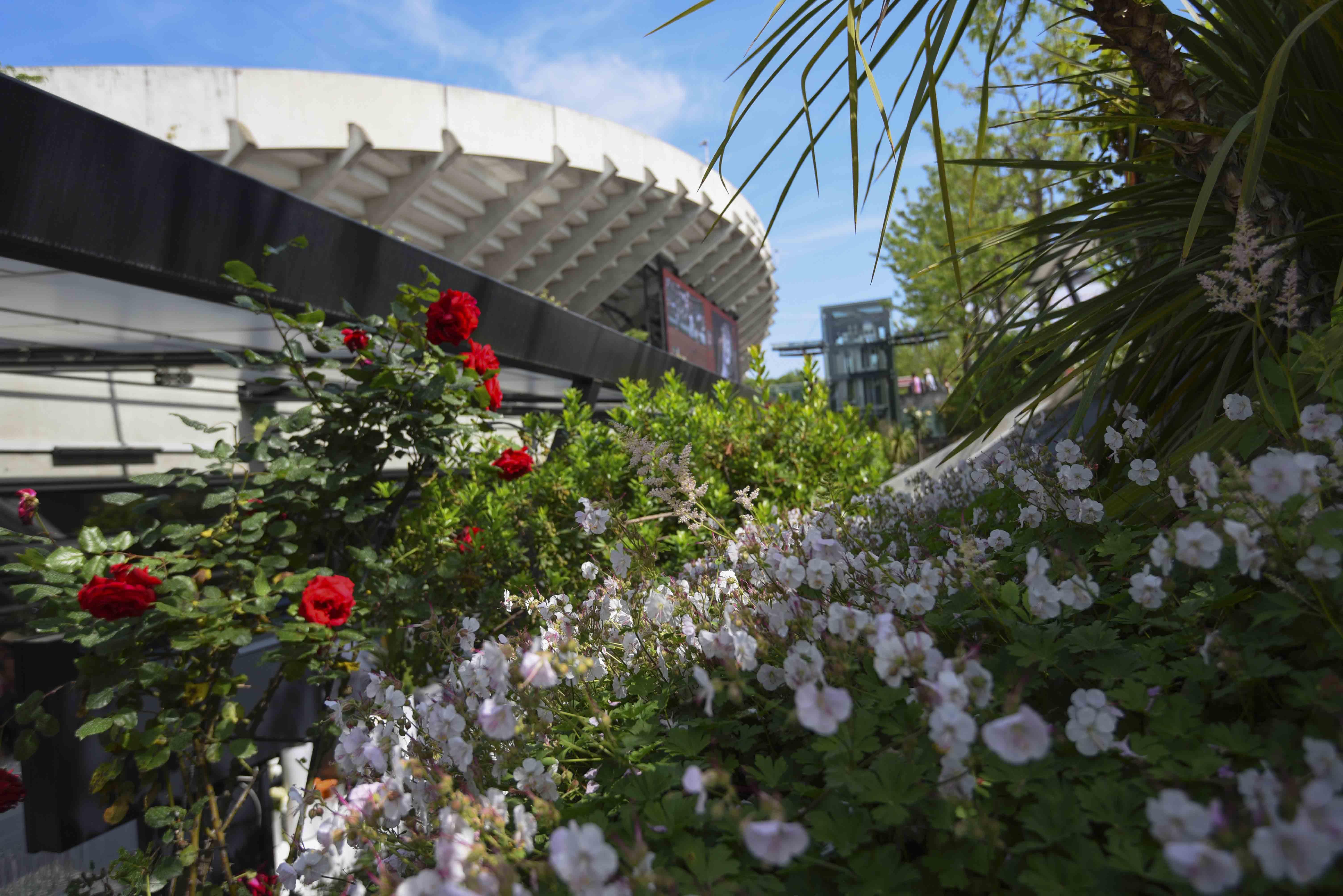Flowers in Roland-Garros / Fleurs à Roland-Garros